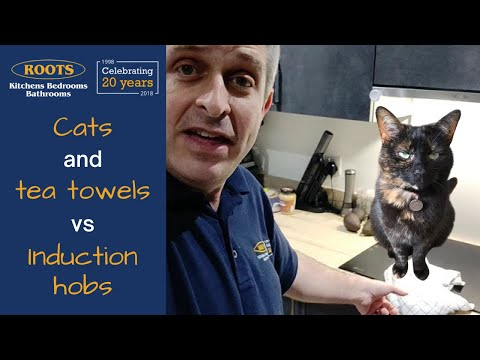 Cats and tea towels vs Induction Hobs